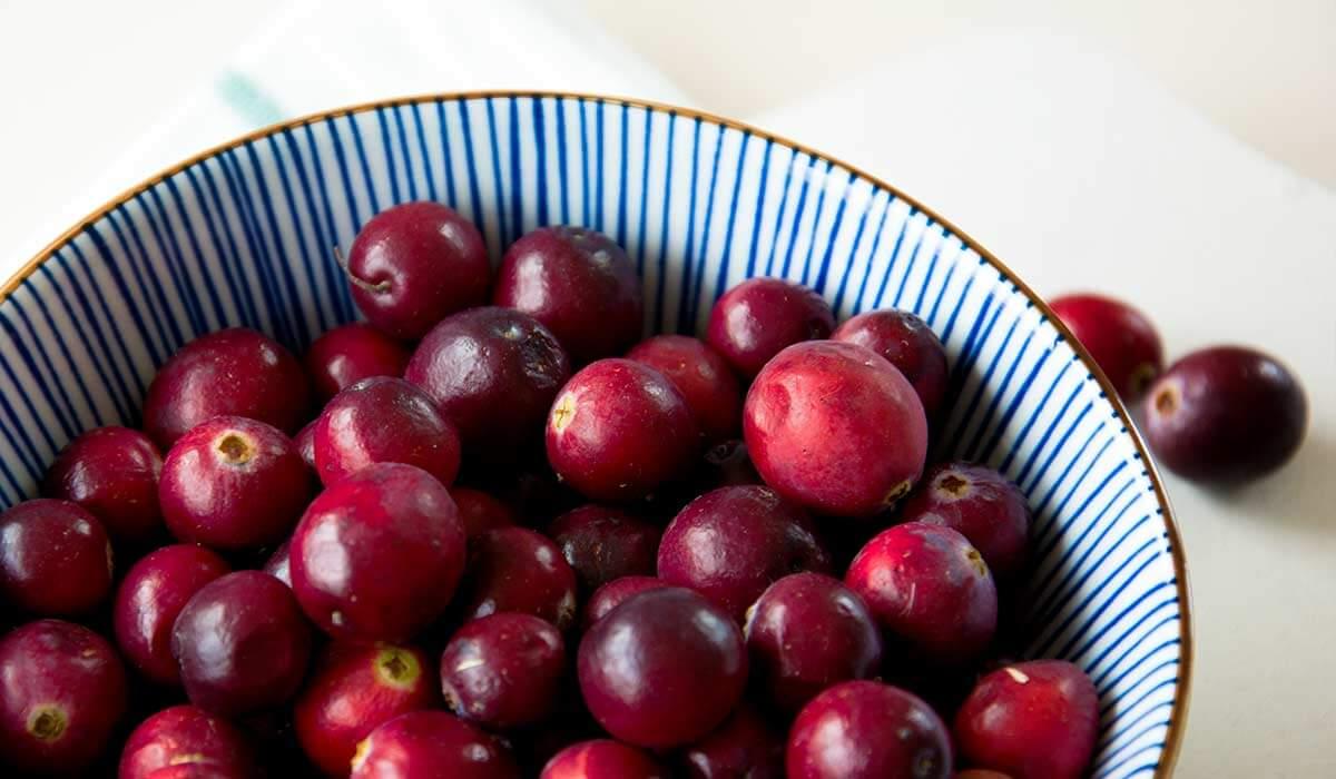 Frische Cranberries lecker als Tee, zum Backen oder Einkochen.
